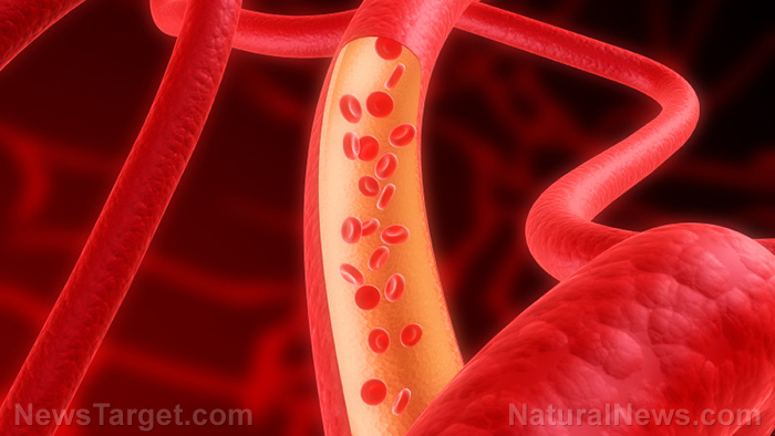 Image: We all have tiny hairs inside our blood vessels that conform to the flow of your blood