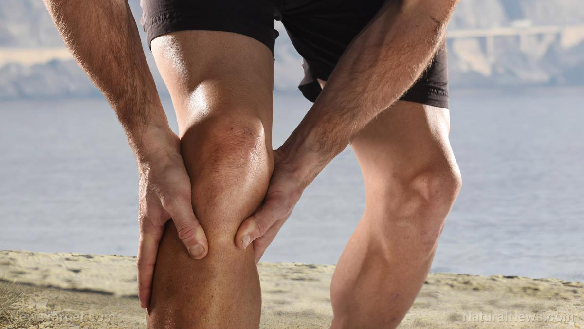Image: Dietary fiber found to reduce osteoarthritis knee pain in first-ever study of its kind
