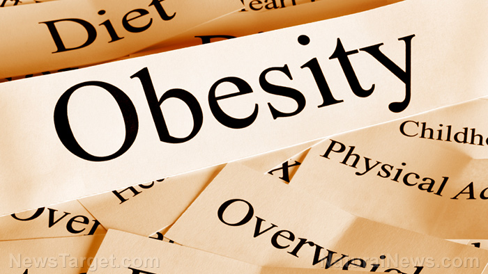"Image: Delusions 101: Academics call for end to categorizing obesity as a ""health issue"""