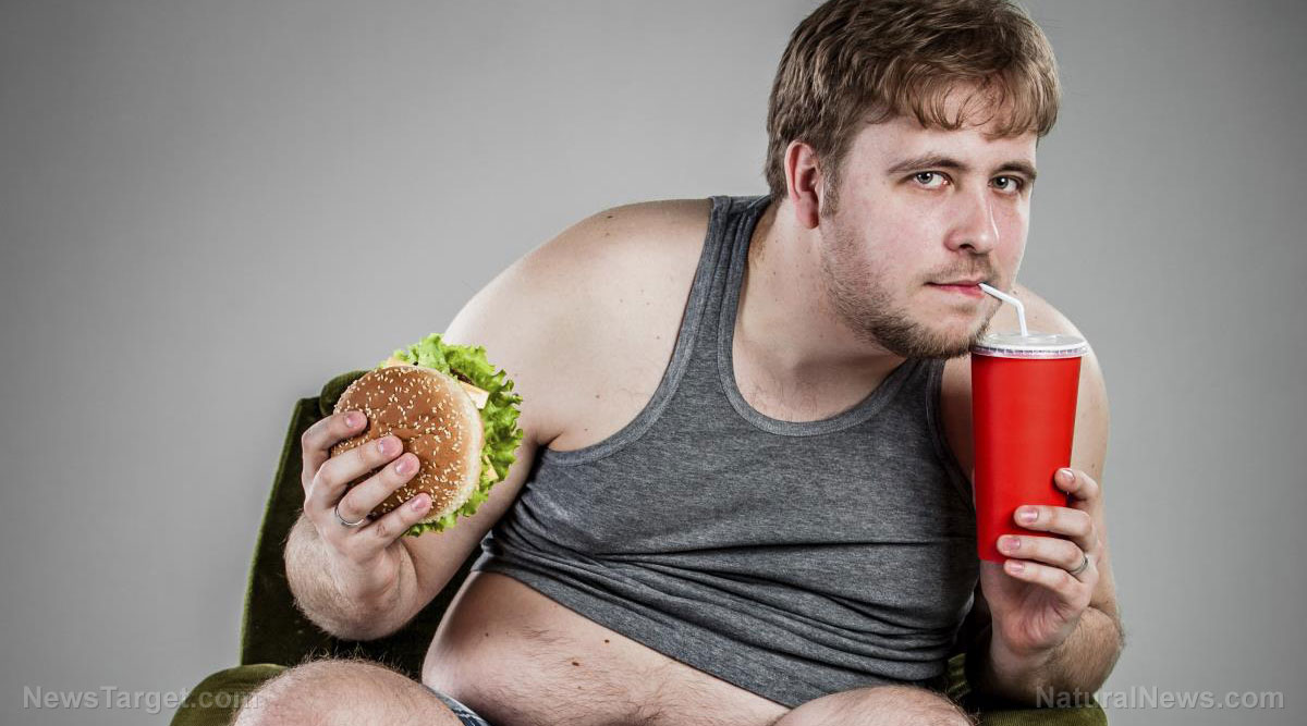 Image: America's youth deemed too FAT to fight — wars, crime or fires — as obesity epidemic spreads