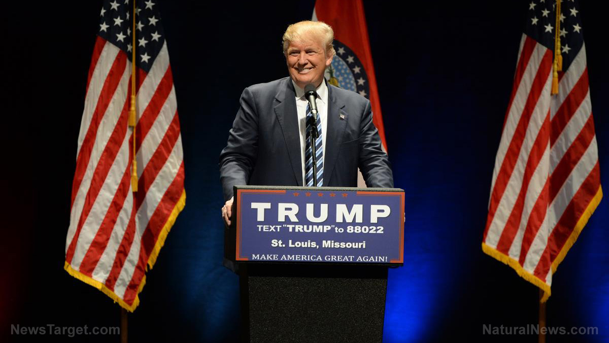 Trump-Donald-Smile-Election-America-Stag