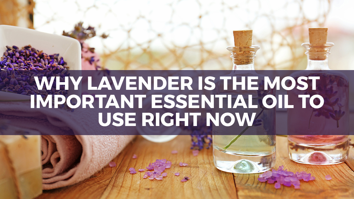Image: Why lavender is the most important essential oil to use right now