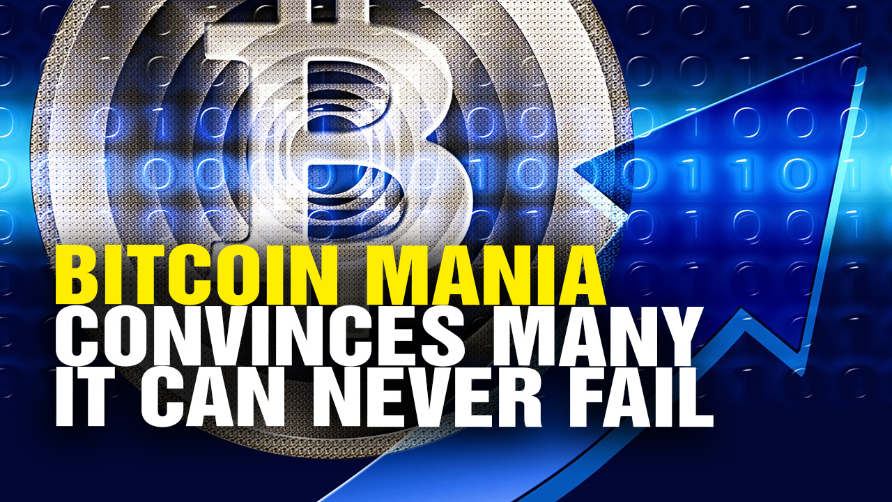 "Image: Bitcoin expert warns of ""hordes of inexperienced investors"" now diving into the MASS MANIA"