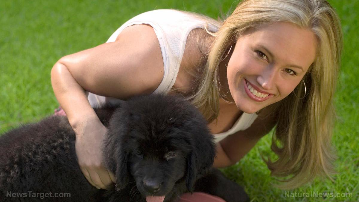 /Woman Dog Happy Pet Plays