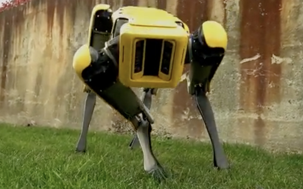 Image: FREAKY: Boston Dynamics' SpotMini robo-dogs can coordinate, navigate, open doors, climb stairs and even load the dishwasher
