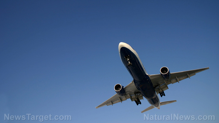 Image: Qantas biofuel-powered airliner required 150 acres of farm land to grow the fuel for a single flight