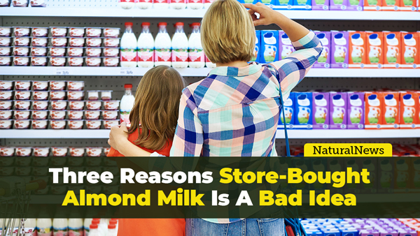 Image: 3 reasons why store-bought almond milk is a bad idea