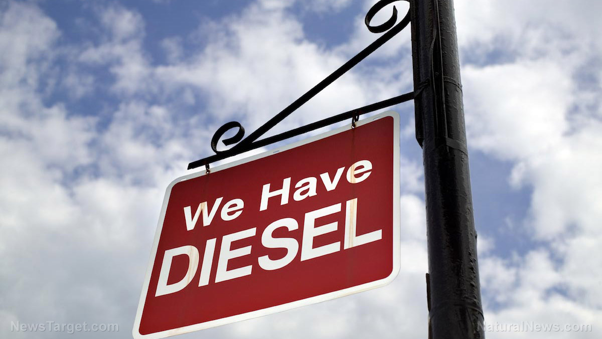 Image: German court rules cities may ban diesel engines