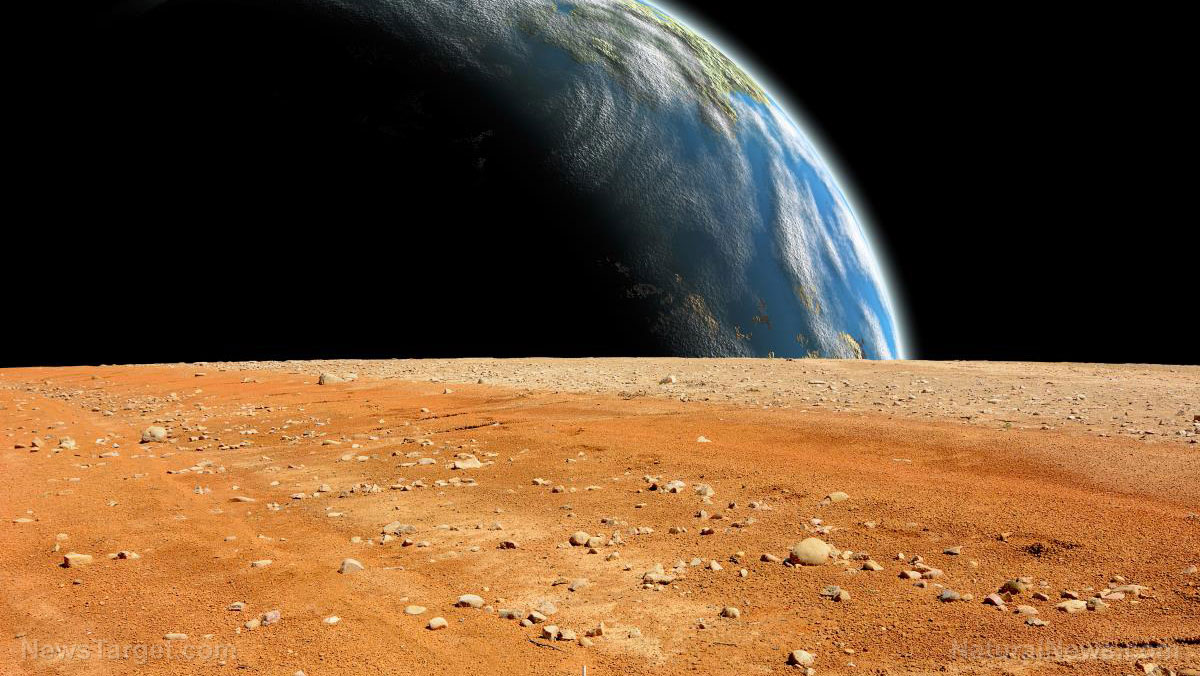 Image: Elon Musk: Mars must be colonized as a potential escape route in case of WW3