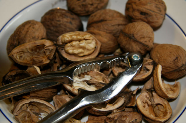 Image: Eating walnuts found to protect the colon from cancerous tumors