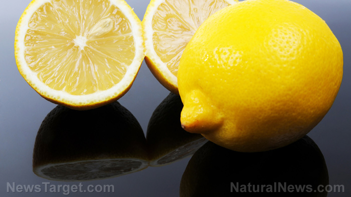 Image: Compounds in lemon found to effectively fight cancer without harmful side effects