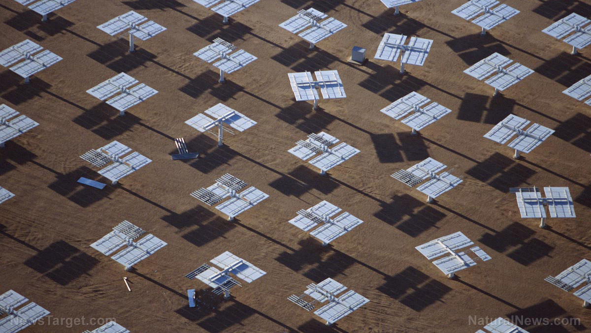 Image: Saudi Arabia to create the world's largest solar project as the kingdom tries to wean off its dependence on oil