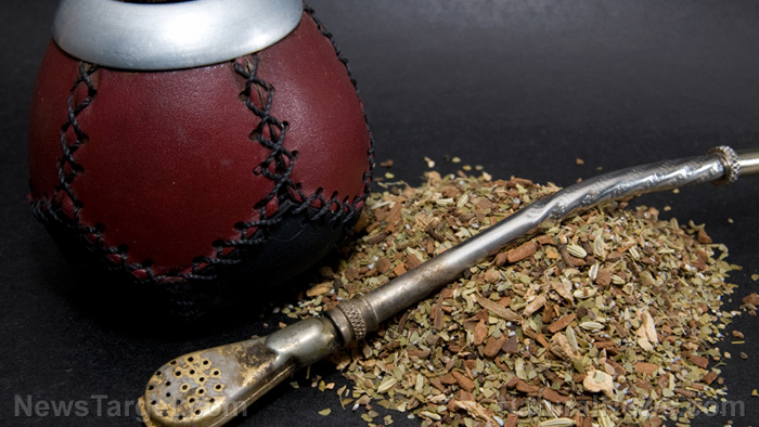 Image: Drinking chilled yerba mate can help you achieve your weight loss goals