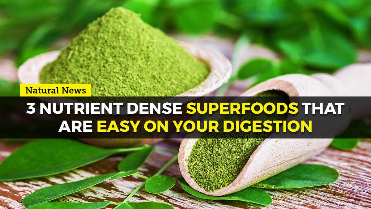 Image: Three nutrient dense superfoods that are easy on your digestion