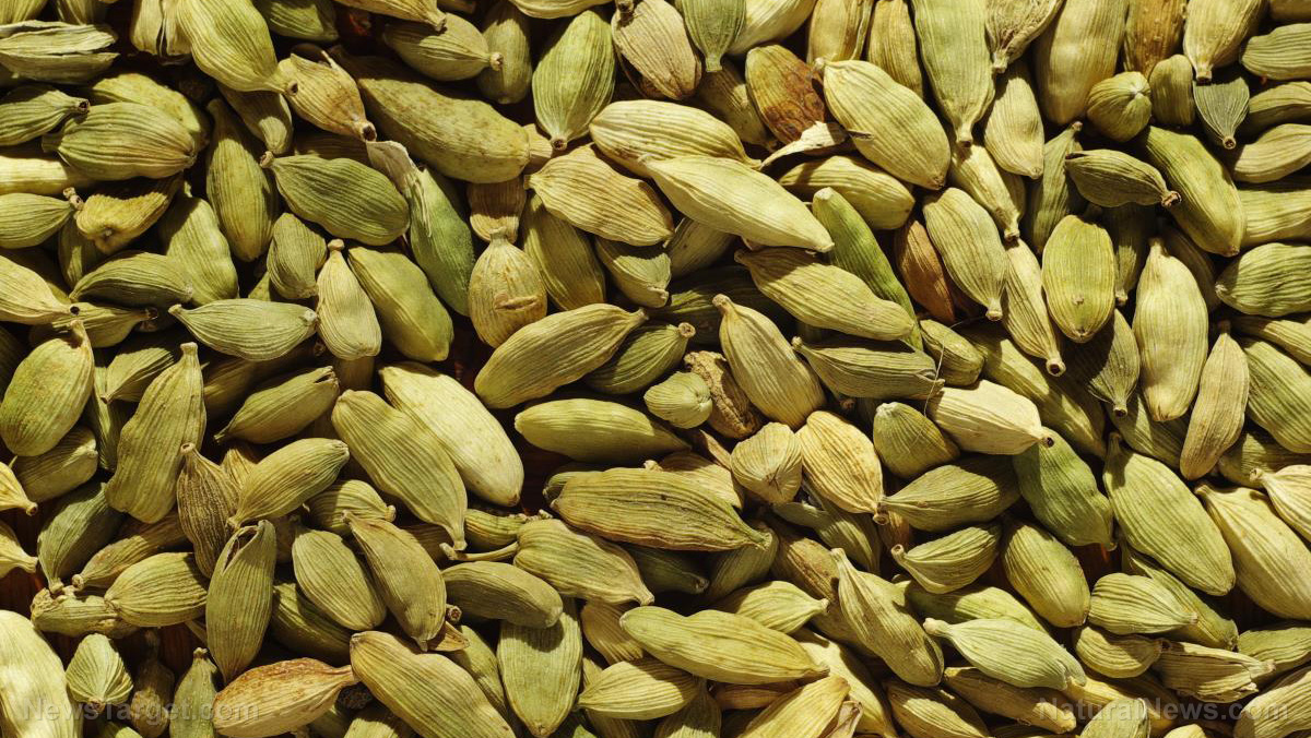 Image: Why cardamom should be part of the diet of every diabetic patient