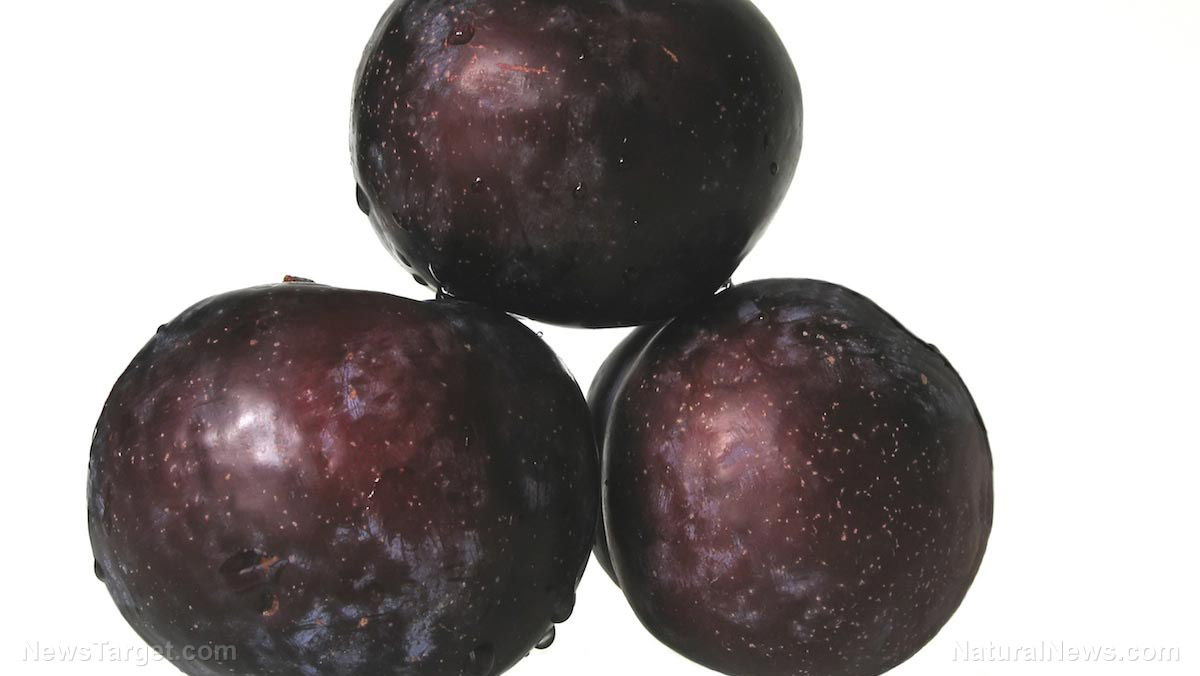 Image: Scientists look to the common plum as a potential natural remedy for cancer