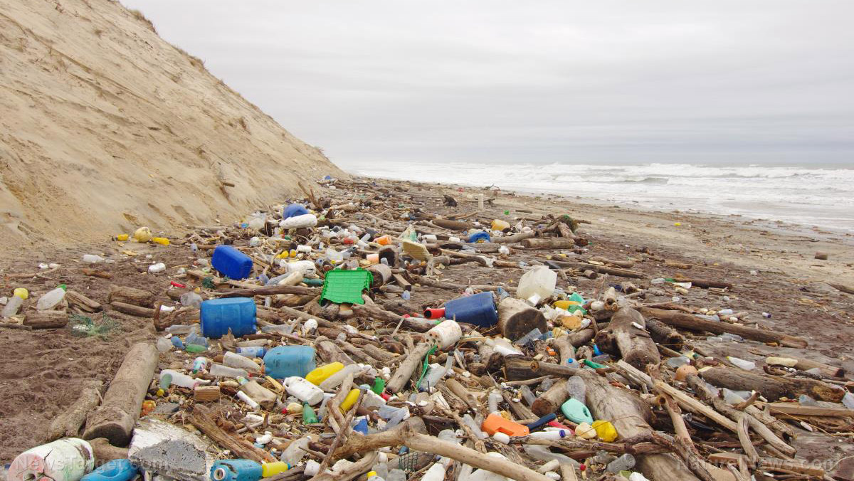 Image: U.K. scientists call on public to help track and map plastic pollution on local beaches