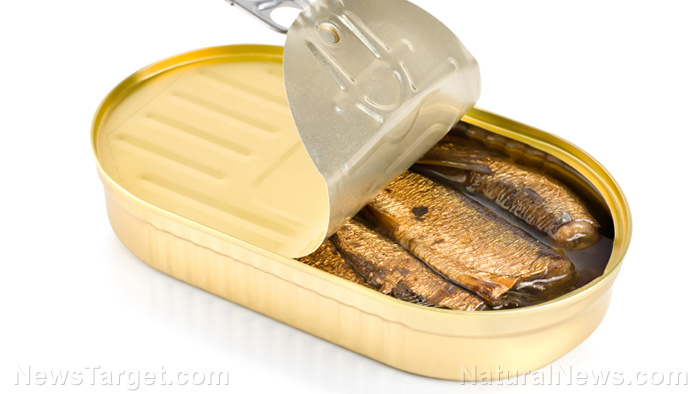 Image: Consuming oily fish reduces the risk and symptoms of MS