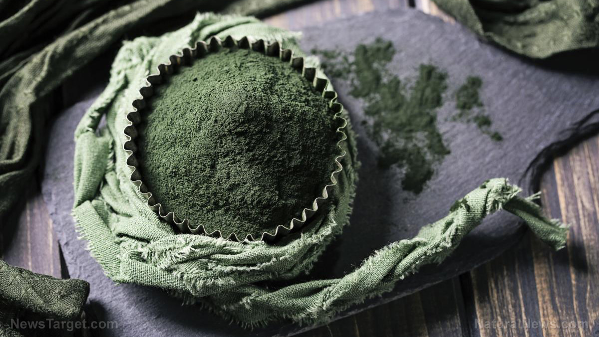 Image: Study: Supplementing with spirulina helps modulate body weight and appetite