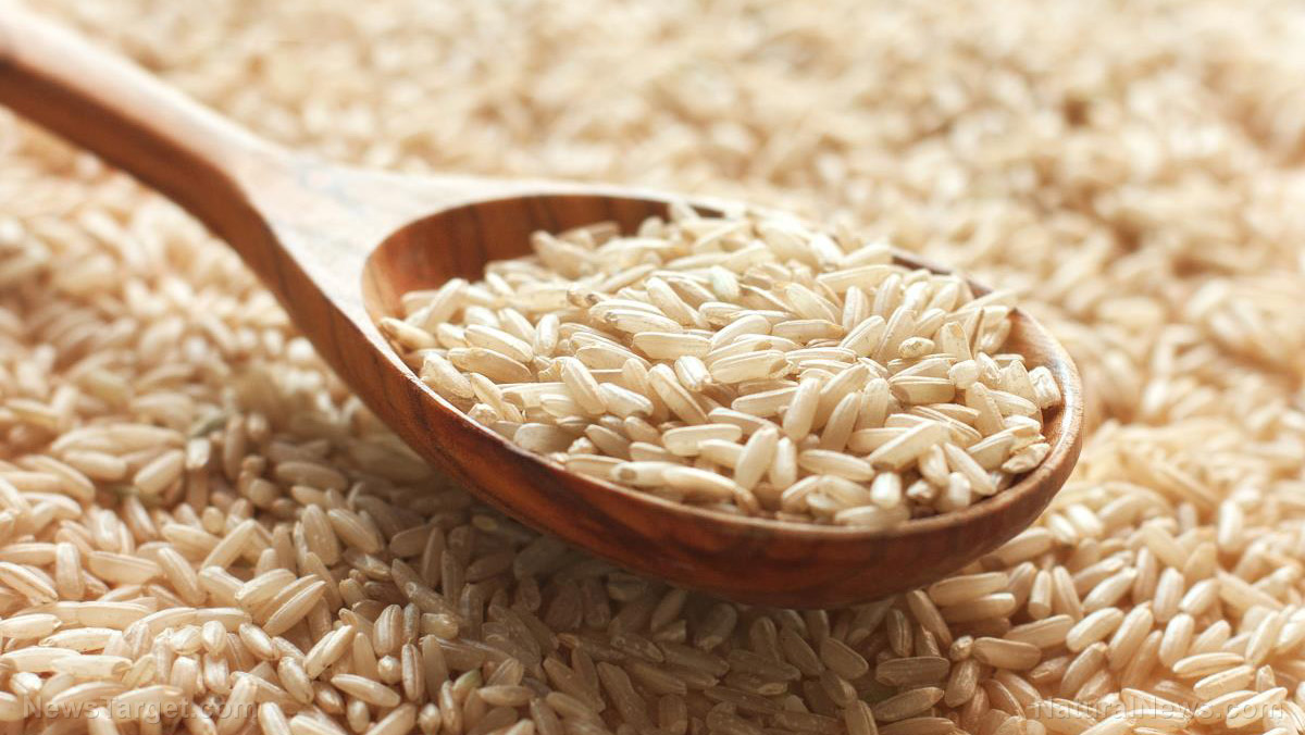 Image: Food for thought: Brown rice reduces cognitive dysfunction linked to Alzheimer's
