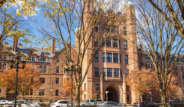 Image: Harvard, Yale brazenly COMMIT to discriminating against people based on the color of their skin