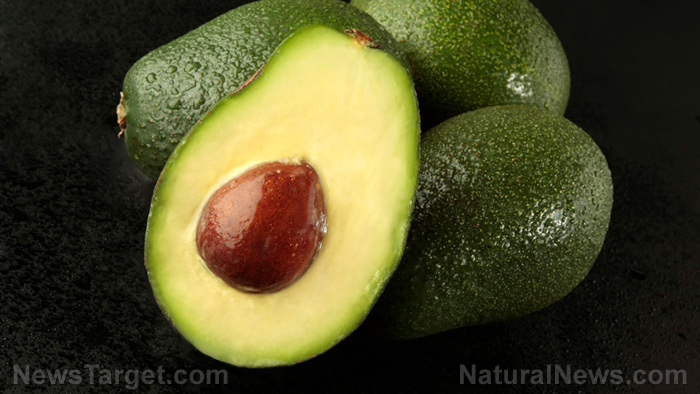 Image: Avocados are one of the simplest and most satisfying ways to prevent degenerative disease