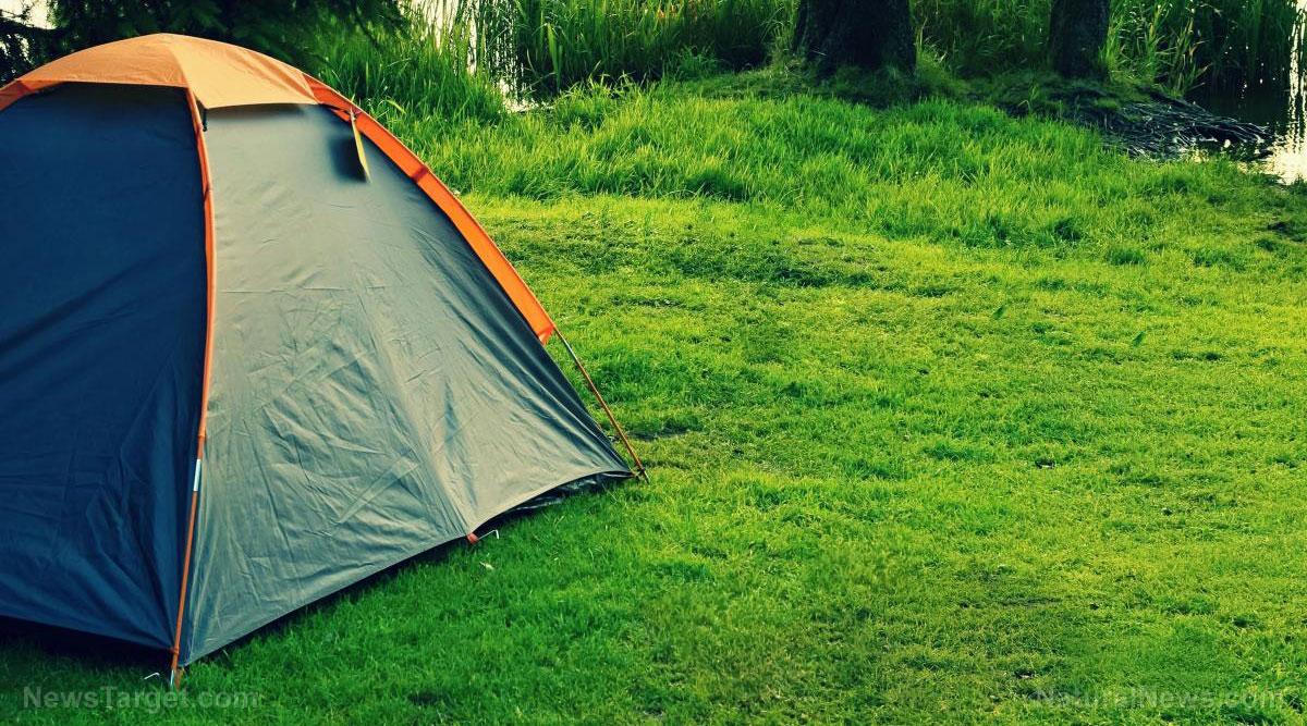 Shtf Shelter: How To Make A Formidable Temporary Shelter When SHTF