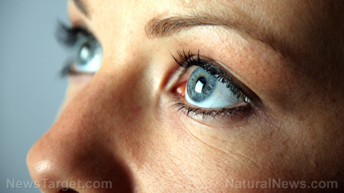 Image: Carotenoids and omega-3s are crucial for healthy eyes, one of the most metabolically active tissues in the body