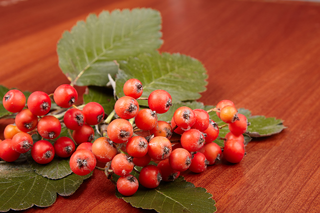 Combine hawthorn and CoQ10 to improve heart health