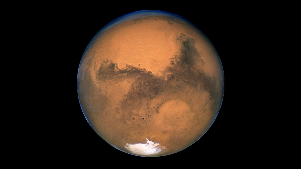 Image: SCIENCE CON: NASA claims it will seek life on Mars in 2020 mission, but it already covered up proof of life from the 1976 Viking mission
