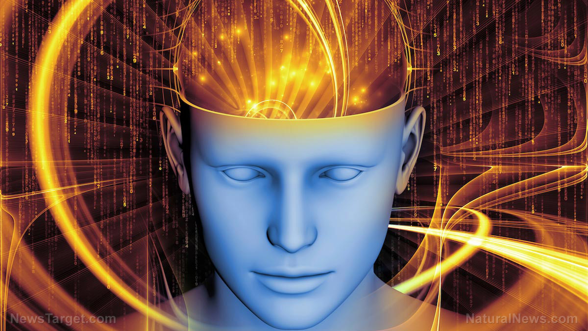 "Image: Inventor claims device will enable tech-augmented ""telepathy"" to function within a decade"