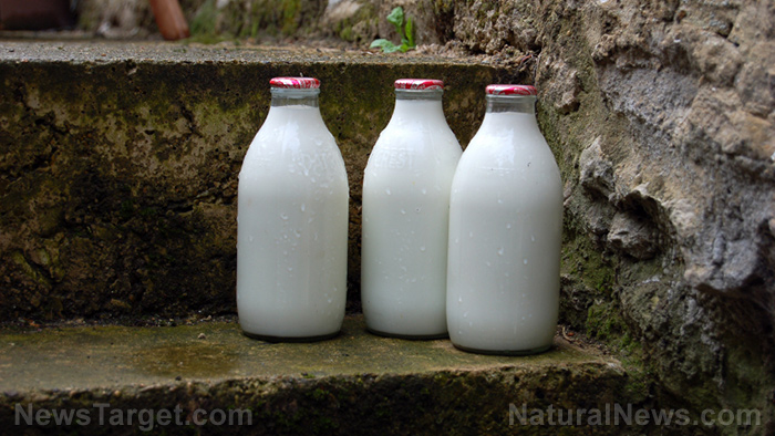 Image: 5 Important tips to keep RAW milk fresh