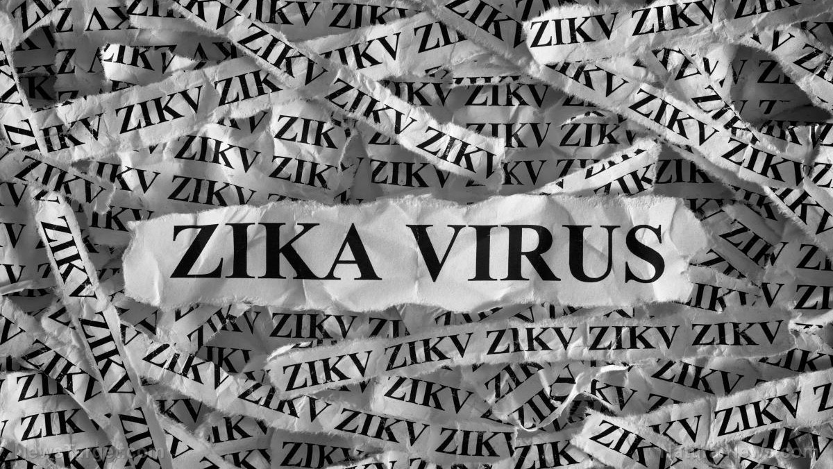 Image: In pushing malaria drug finding, the mainstream media accidentally admits Zika virus vaccines are obsolete
