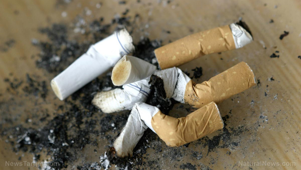 Image: New life for pollution: Chemists are looking into using cigarette butts for hydrogen storage