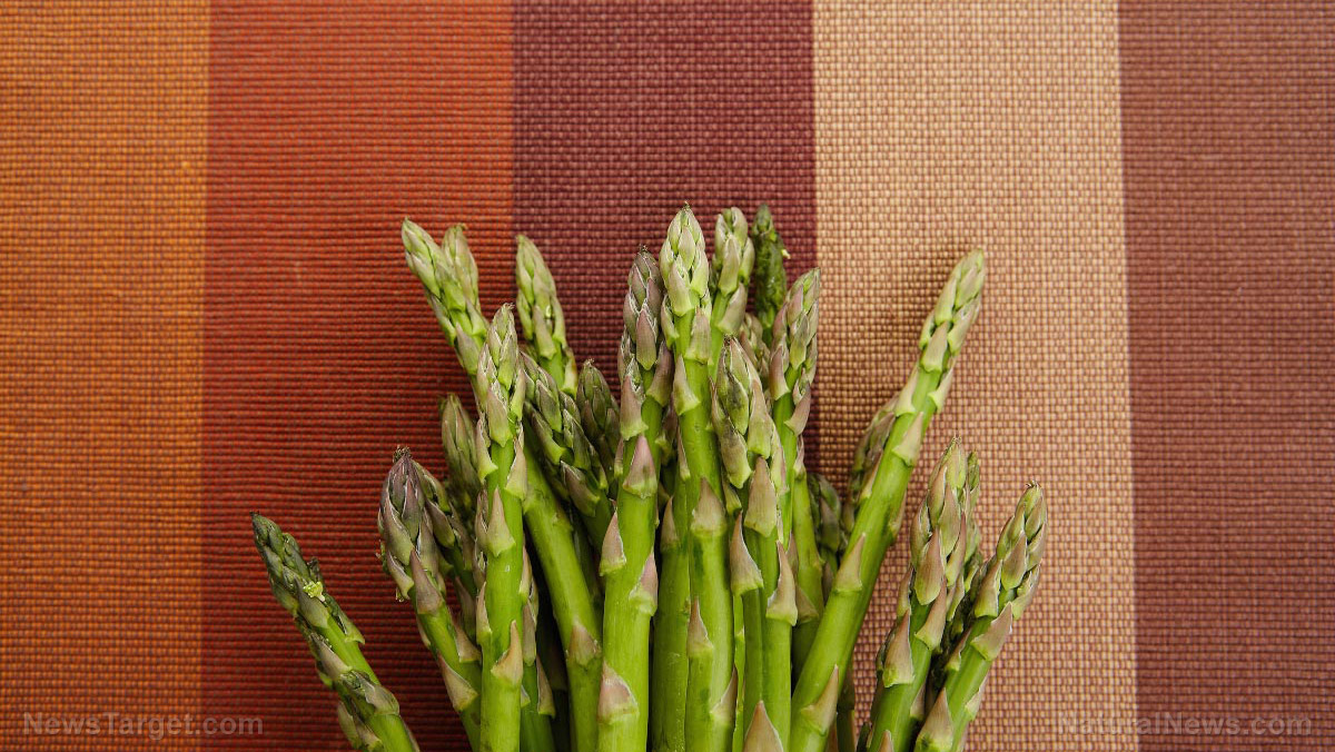 Image: Look younger with Chinese asparagus – it prevents aging by reducing the amount of free radicals in your body