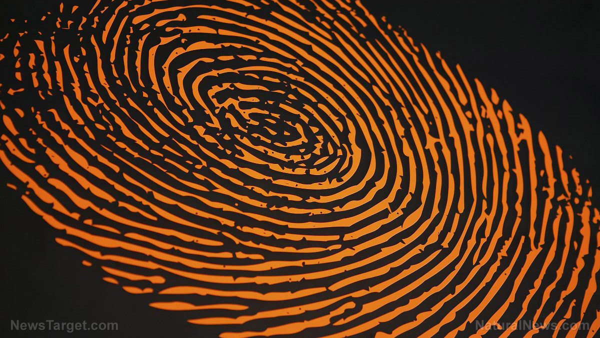 Image: Scientific group says fingerprint evidence in crimes is practically worthless