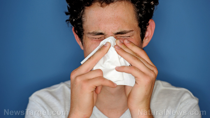 Image: Treating your nasal allergies with alternative medicine