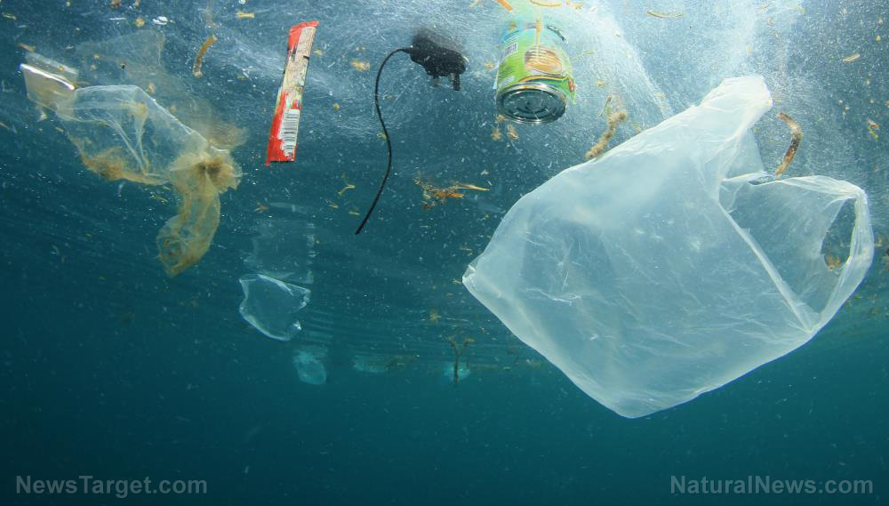 Image: How we can really reduce plastic pollution (it's not by recycling)