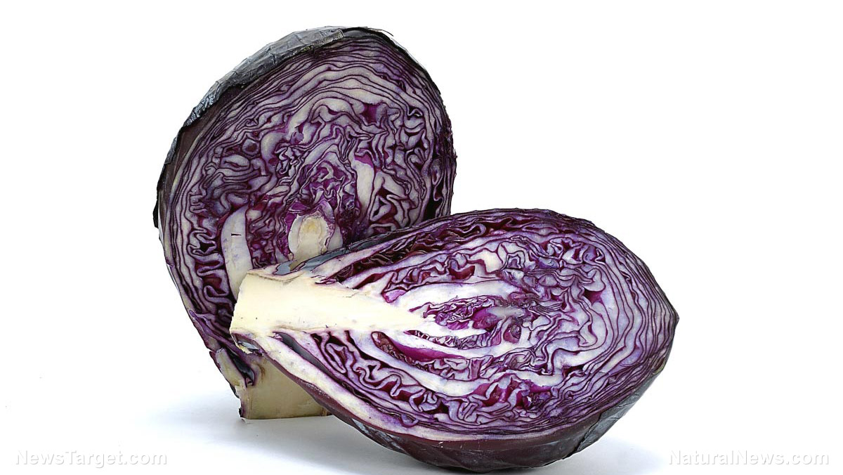 Image: Eating more red cabbage reduces your risk of Alzheimer's