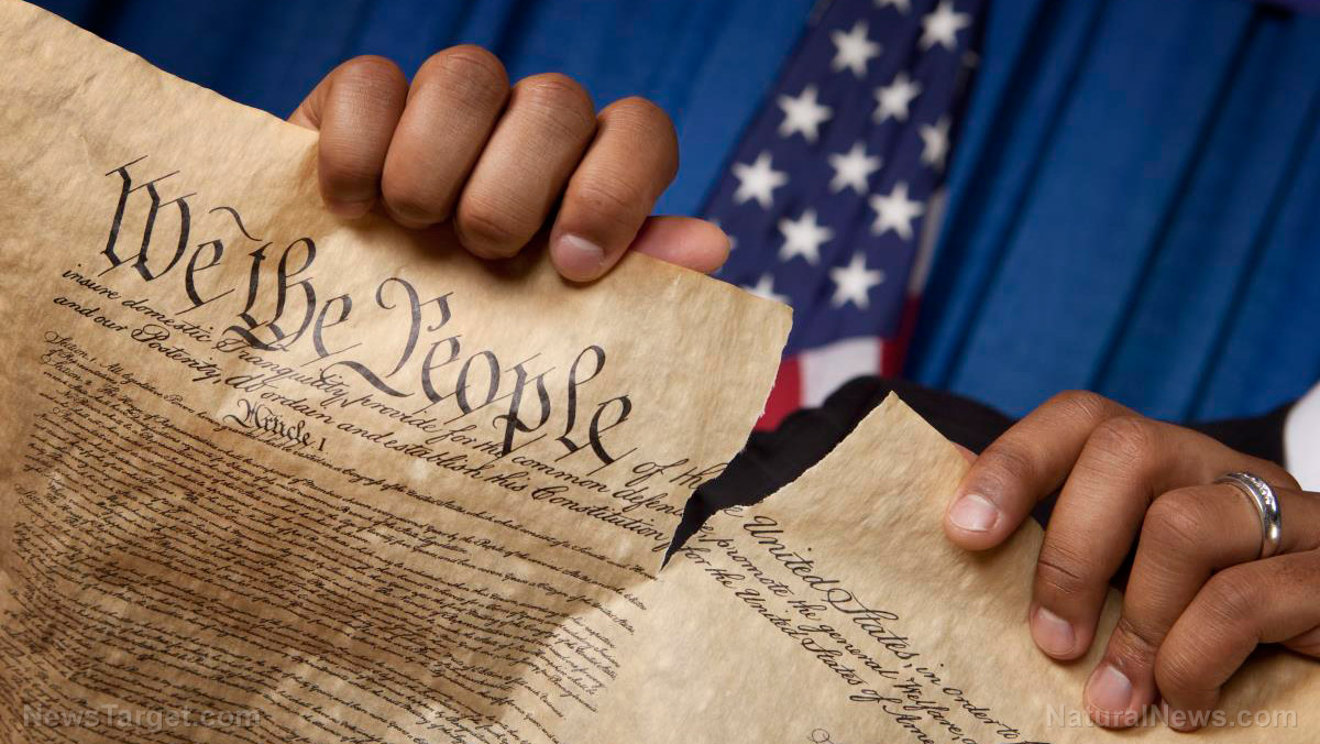 "Image: ACLU, SPLC must be prosecuted for ""sabotaging a constitutional republic,"" warns author"