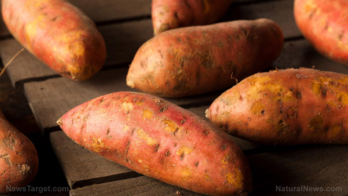 Image: Sweet potatoes are nutrient-dense foods with high amounts of beta-carotene