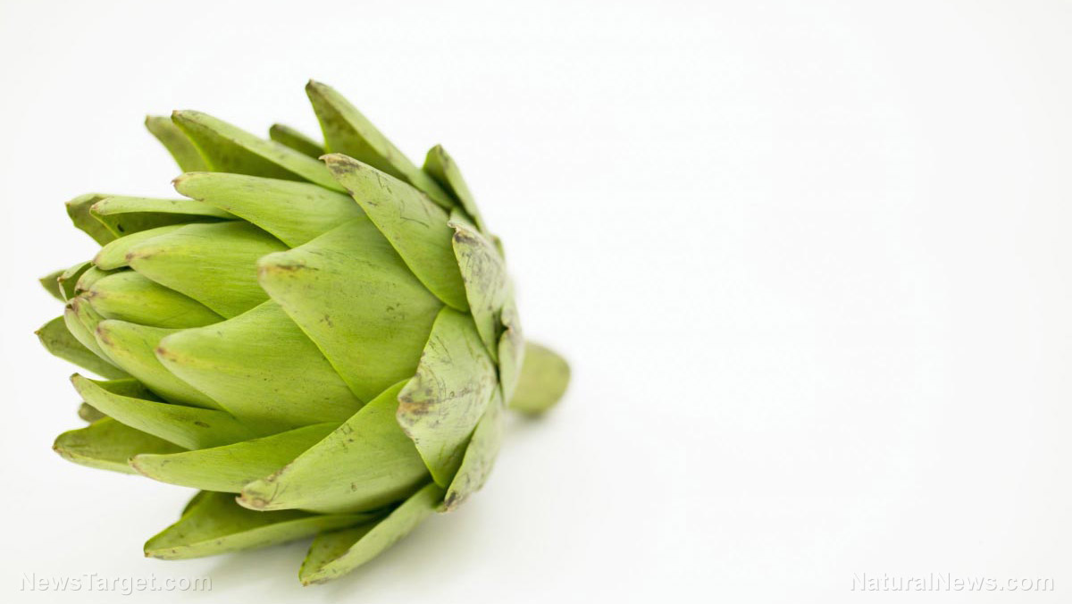 Image: Artichoke extract found to lower high cholesterol and protect the liver from alcohol damage