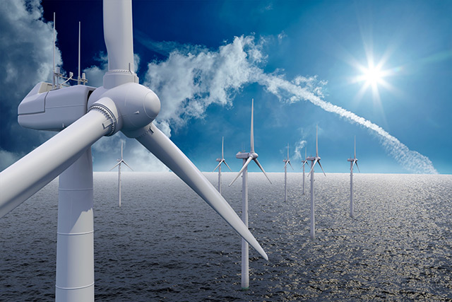 Image: Wind farm construction may harm marine populations