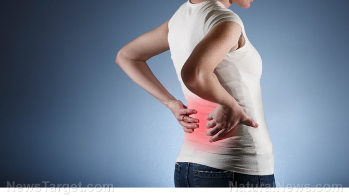 Image: Six reasons you may be having lower back pain and how to treat it WITHOUT painkillers
