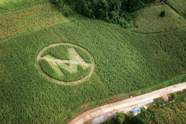 Image: Vietnam demands Monsanto pay hundreds of millions in damages to victims of Agent Orange