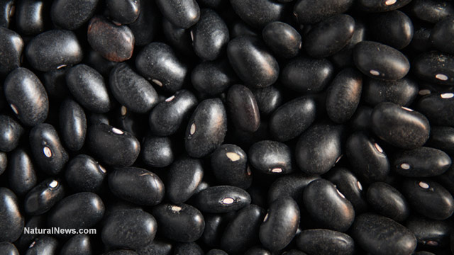 Image: Why black beans are the best foods for hypertensive people