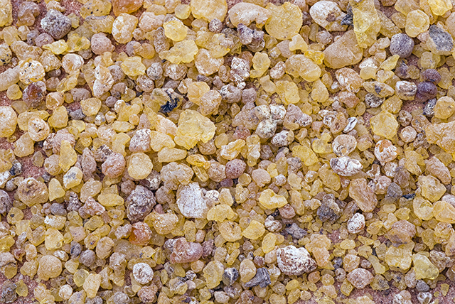Image: Boswellia is a powerful anti-inflammatory herbal extract that can prevent cancer