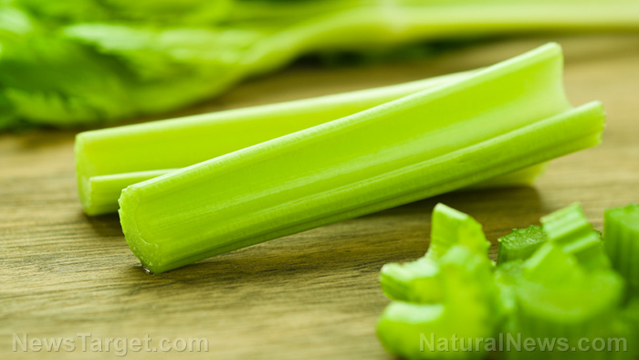 Image: Compounds found in celery make it a powerful healing plant
