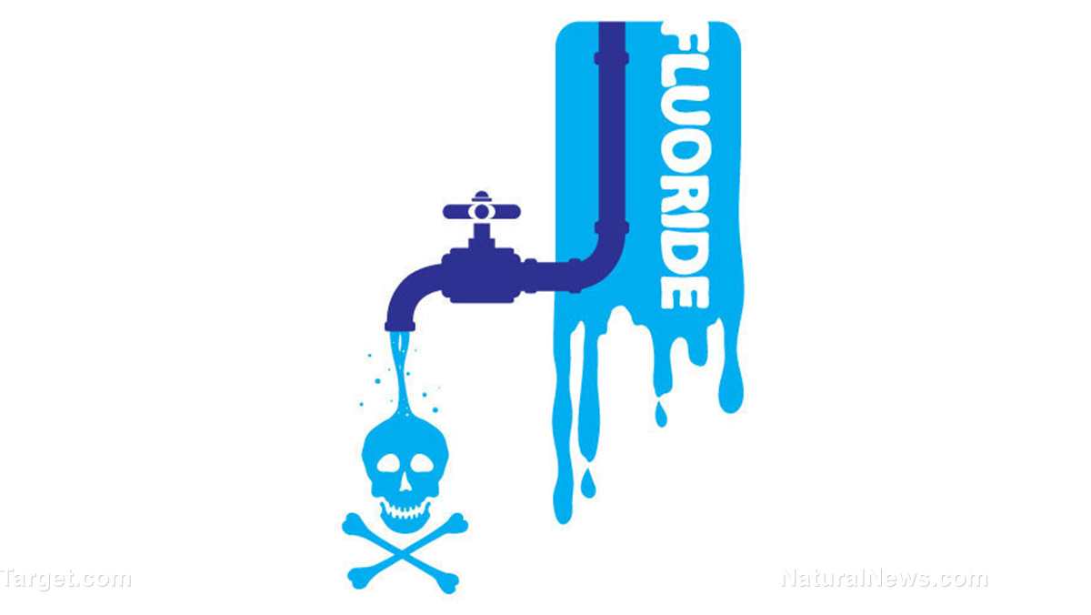 Image: ANOTHER study confirms the detrimental effects of water fluoridation on the IQs of children