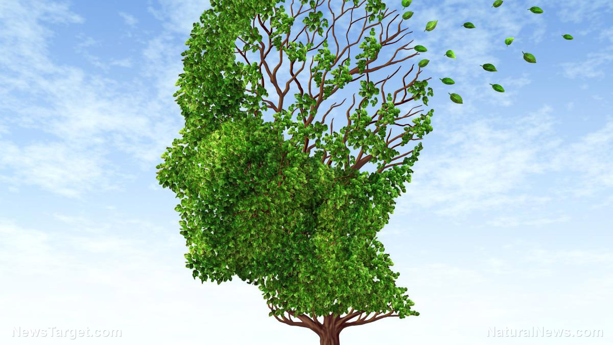 Image: Researchers may have found a link between Alzheimer's disease and a common class of herbicides